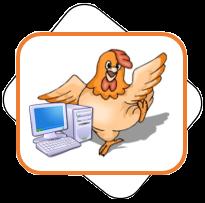 Informática Para Gallinas